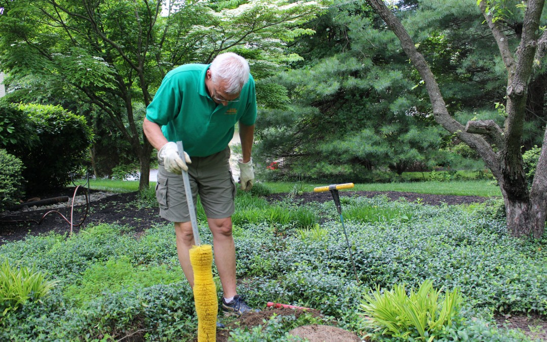 Curt installing an effluent filter in West Chester, PA
